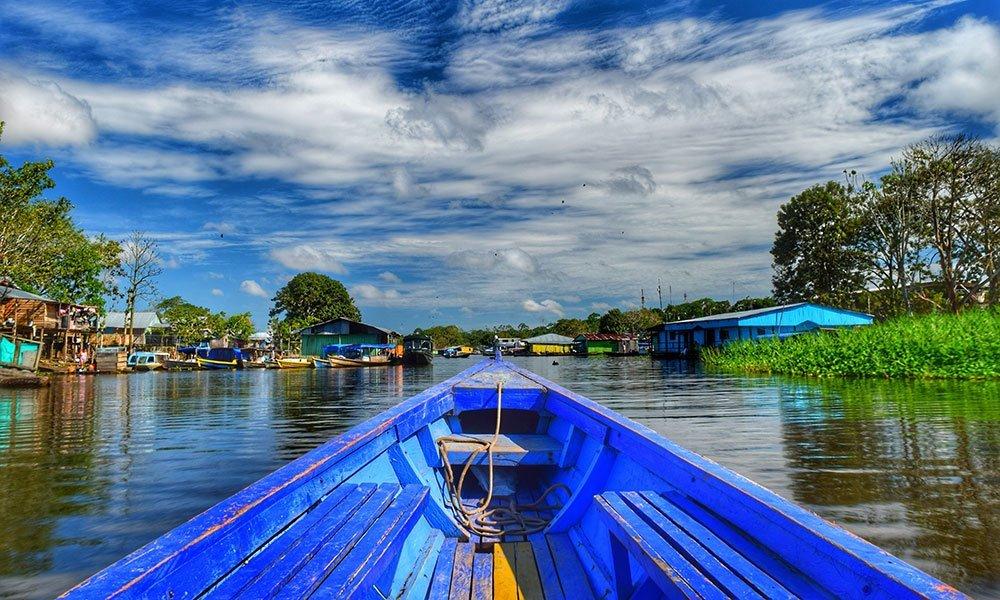 Dentro de la espesura de la selva en el Amazonas colombiano
