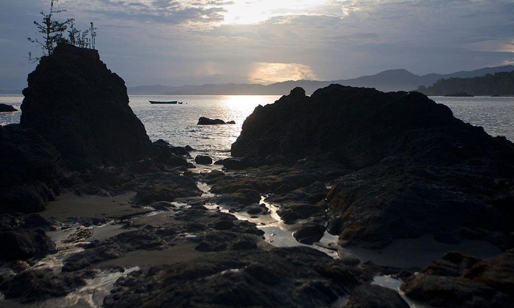 En busca de las ballenas jorobadas en el Pacífico colombiano